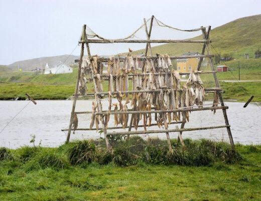 Rundt på Margerøya